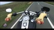 Une Harley au Tourist Trophy